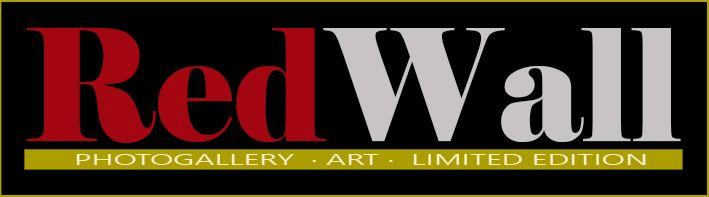 logo redwallx