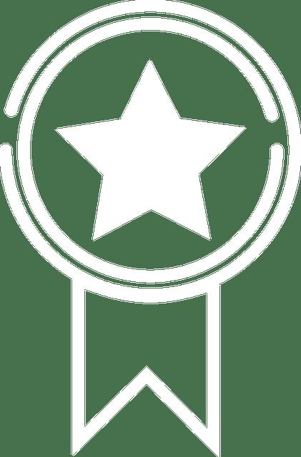 plantilla premium diseñador página web mallorca